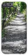 Forest Path IPhone Case by Dobromir Dobrinov