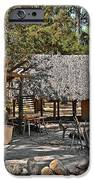 Fountain Of Youth - Living History IPhone Case by Christine Till