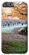 Frost In The Valley IPhone Case by Bill Gallagher