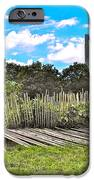 Garden With Bamboo Garden Fence In Battery Park In New York City-ny IPhone Case by Ruth Hager