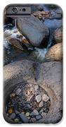 Gauthier Creek Point Of Interest IPhone Case by Sandra Updyke