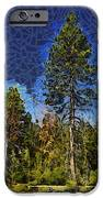 Giant Abstract Tree IPhone Case by Barbara Snyder