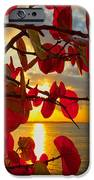 Glowing Red IPhone Case by Stephen Anderson