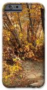 Golden Riverbank IPhone Case by Carol Groenen