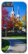 Gonzaga Pathway IPhone Case by Inge Johnsson