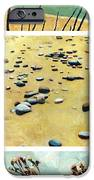 Great Lakes Triptych 2 IPhone Case by Michelle Calkins