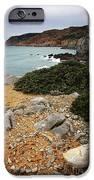 Guincho Cliffs IPhone Case by Carlos Caetano