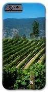 Heard It Through The Grapevine IPhone Case by Lisa Knechtel