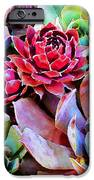 Hens And Chicks Series - Copper Tarnish  IPhone Case by Moon Stumpp
