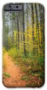 Hidden Valley IPhone Case by Bill Wakeley