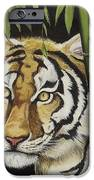 Hiding In The Bamboo IPhone Case by Wanda Dansereau