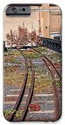 High Line Spur IPhone Case by Rona Black
