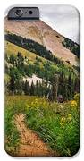 Hiking In La Sal IPhone Case by Adam Romanowicz