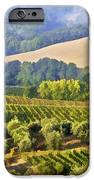 Hills Of Tuscany IPhone Case by David Letts