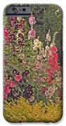 Hollyhocks IPhone 6s Case by Kay Novy