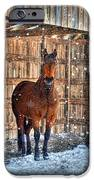 Horse And Snow Storm IPhone Case by Dan Friend