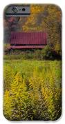 In The Heart Of Autumn IPhone Case by Debra and Dave Vanderlaan
