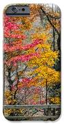 Indiana Fall Color IPhone Case by Alan Toepfer