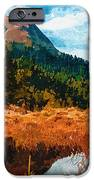 Into The Woods IPhone Case by Ayse Deniz