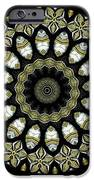Kaleidoscope Ernst Haeckl Sea Life Series Steampunk Feel Triptyc IPhone Case by Amy Cicconi