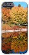 Lake At Davis IPhone 6s Case by Jim Halas