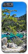 Lake Tahoe Bonsai Tree IPhone Case by Scott McGuire