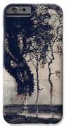 Landscape With Three Trees IPhone Case by Victor Hugo