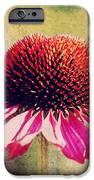 Last Summer Feeling IPhone Case by Angela Doelling AD DESIGN Photo and PhotoArt