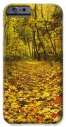 Leaving The Way IPhone Case by Peter Coskun