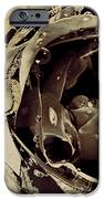 Life Iv IPhone Case by Yanni Theodorou