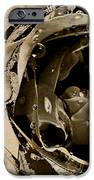 Life V IPhone Case by Yanni Theodorou