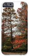 Little Bit Of Red IPhone Case by John Rizzuto