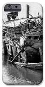 Mary D Hume Shipwreck - Rogue River Oregon IPhone Case by Gary Whitton
