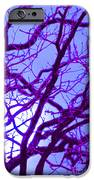 Moon Tree Purple IPhone Case by First Star Art