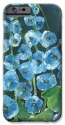 Morning Glory Greetings IPhone Case by Sherry Harradence