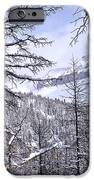 Mountain Landscape IPhone Case by Elena Elisseeva