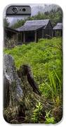 Mountain Mists At Le Conte IPhone Case by Debra and Dave Vanderlaan