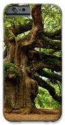 Mystical Angel Oak Tree IPhone Case by Louis Dallara