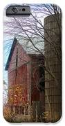 Non Working Barn Property IPhone Case by Tina M Wenger