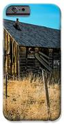 Old And Forgotten IPhone Case by Robert Bales