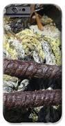 Old Trap Close-up IPhone Case by Minnie Lippiatt