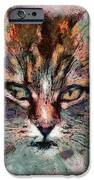 One More Cat IPhone Case by Yury Malkov