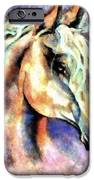 One Spirit IPhone Case by Janine Riley