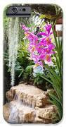 Orchid Garden IPhone Case by Carey Chen
