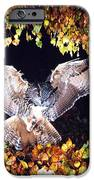 Owl About To Land IPhone 6s Case by Manfred Danegger