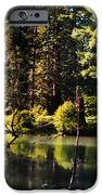 Oxbow Triptych IPhone Case by Peter Piatt