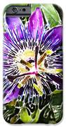 Passion Fruit Flower IPhone Case by Nato  Gomes