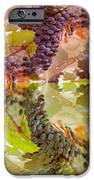 Passionate Squeeze IPhone Case by PainterArtist FIN