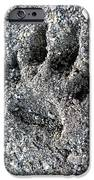 Paw Print IPhone Case by Nicki Bennett