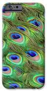 Peacock Feather Cascade IPhone 6s Case by Angelina Vick